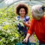 Propane + Greenhouse = Year Round Enjoyment